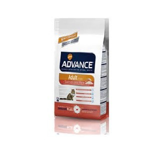 Advance Cat Adult Salmon