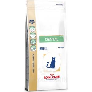 Dental Feline