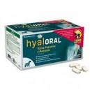HyalOral Razas pequenas e medianas