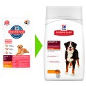 Canine Adult Advanced Fitness Large Breed