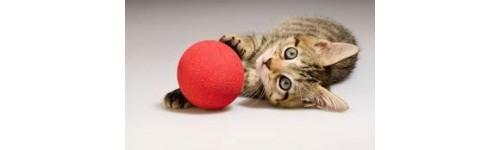 Xoguetes para gatos