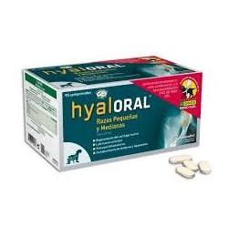 HyalOral Razas pequeñas y medianas